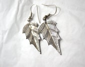 Silver Decidious Leaf Earring.