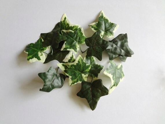 Mix Ivy Leaves