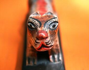 "Fine Art Photography ""Tiger On Orange"" Photograph"