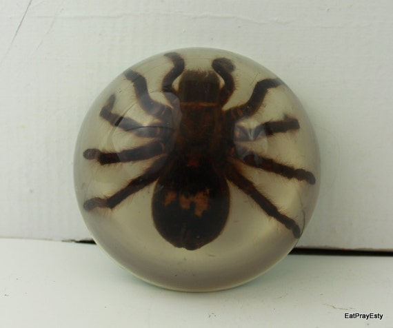 Reserved for SMH Vintage Lucite Tarantula Paperweight