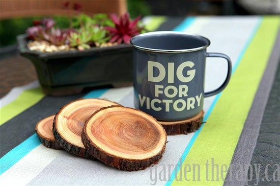 Set of 4 Natural Branch Coasters