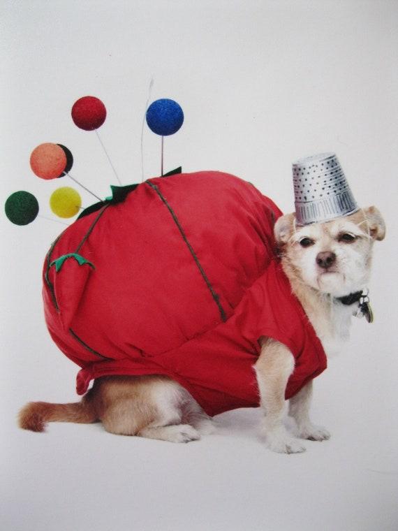 prize-winning Halloween Small Dog PIN CUSHION Costume