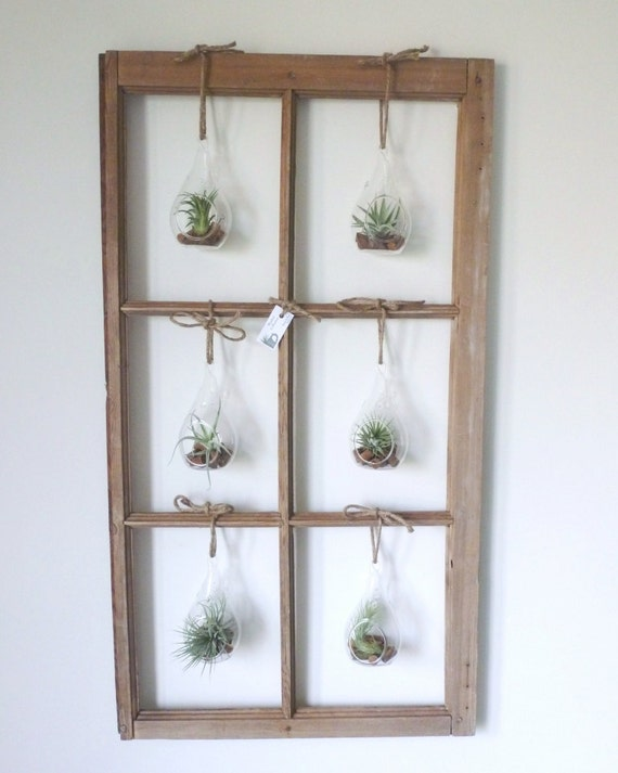 RESERVED FOR ASHLEIGH - Brown 6-pane Air Plant Window