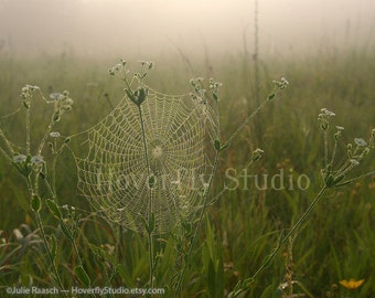 Prairie in Fog - 8x10 Nature Photograph