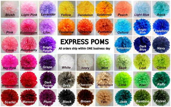 Tissue Paper Pom Poms - 5 Medium Poms - Ships within ONE Business Day - Tissue Poms - PomPom - Tissue Pom Poms - Choose Your Colors!