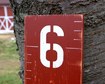 Barn Red Wooden Growth Chart for Children - Distressed
