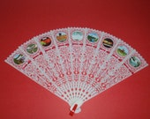 White Plastic Lace Look NIAGARA FALLS Souvenir Folding Fan with PICTURES