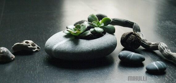 hand engraved beach stone flower planter zen garden, relax with gardening in small dimension