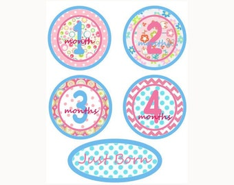 Baby Monthly  Iron On Heat Transfers - Pink & Aqua Girly Flower Plus Just Born  Designs X1