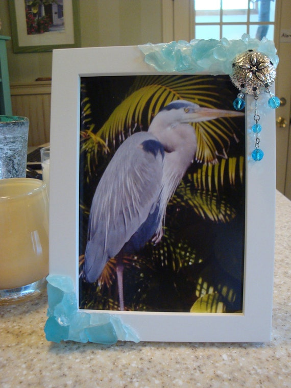 Sea Glass Frame With Silver Metal Sand Dollar