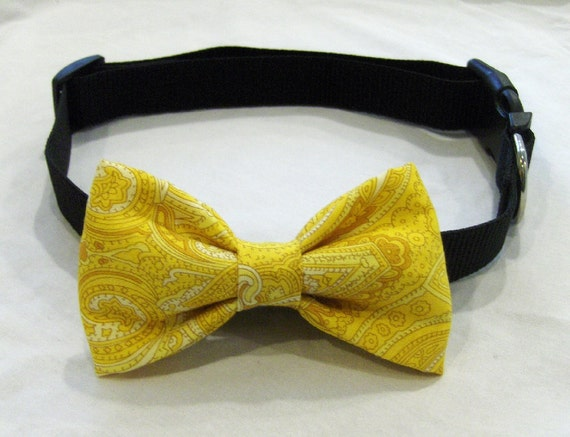 mustard yellow paisley DOG BOW TIE attachment pet animal accessories Brookes and Company