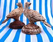 Two Vintage Cast Iron Birds, Cast Iron Bird Finials, Pair of Rusty Birds, Fence Finial, Bookends