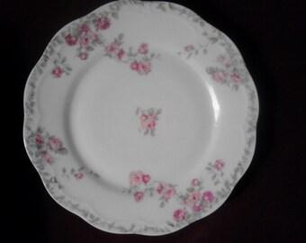 Vintage Flowered Plate ECS