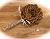 Rustic Boutonniere - Pine Cone Boutonniere - Fall Boutonniere - Groom Lapel Pin - Winter Boutonniere - Groom Boutonniere