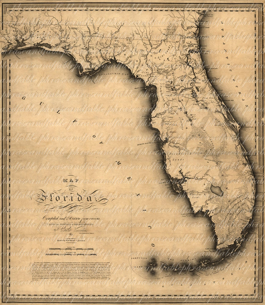 Map of Florida From The 1800s 139 Ancient New World