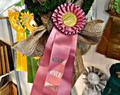 North River vintage horse show ribbon