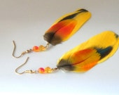 Feather Earrings, Yellow,  Orange and Blue Parrot Feather Earrings 4.5 inches long gold non tarnish ear wires