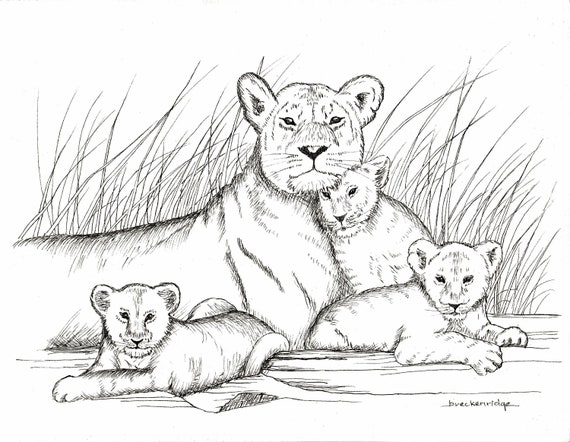 Mother and Baby Lions Drawing Print