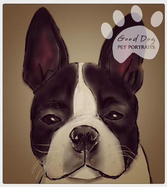 Custom Pet Portrait Print - Boston Terrier - Unique Personalized Digitally Painted Animal Portraits, Animal Lover Gift