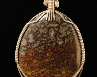 Dino Bone in Sterling Silver Pendant