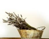 Vintage Italian Silver Metal Wire Fruit / Bread Basket Bowl .