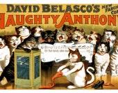 Naughty Anthony Singing Cats Vaudeville Theater Vintage Art Print - Digitally Remastered Fine Art Print / Poster