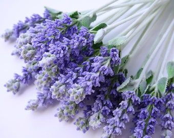 Open Pollinated, Grow Your Own Lavender, Herb, 25 Seeds, Excellent for Sachets and Soaps