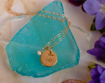 Small Capricorn Necklace - Tiny gold Capricorn Zodiac Sign Pendant on 14k Gold Filled Chain with Pearl or CHOOSE GEMSTONE - Tiny Dainty