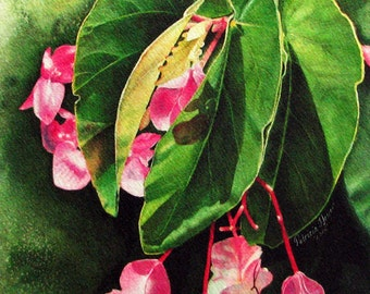 Archival Framed Print on Canvass of Begonia's, Pinks-Greens, Size 17-3/4 x 22-3/4