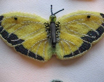 Yellow Sulphur Butterfly OOAK bead embroidery on handmade felt Seed beads