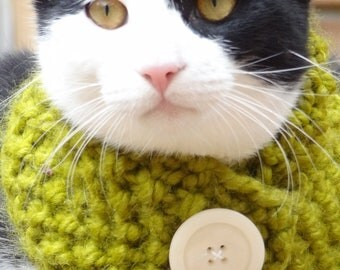 Knit Cat Cowl, Knit Cat Scarf, Cowl for Cats, Scarf for Cats, Small Dog Cowl, Small Dog Scarf, Pet Cowl, Pet Scarf