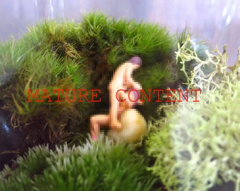 No, Don't Worry, No One Can See Us...MATURE CONTENT Terrarium People Miniature Tiny Naked Couple Sexy Terrarium Accessory Funny Gift Naughty