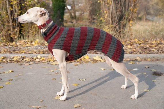 Whippet Sweater / Striped / dark red and gray by SleepAndHound