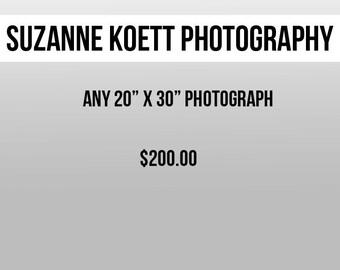 "Any 20"" x 30"" Photograph"