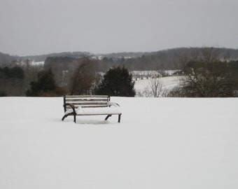 Solitary Bench 8X10 Photo, rustic cabin decor, Winter Photography, Winter landscape, Black and White, Snow Photography, Bench photo