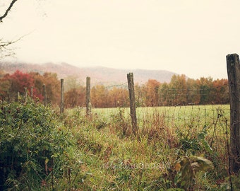 The Meadow - Photographic Print - Mountains, Mist, Appalachia, West Virginia, Snowshoe, Mountain, Autumn, Fall, Landscape, Decor, Green,