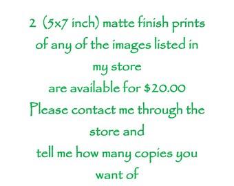 Choice of 5x7 Prints