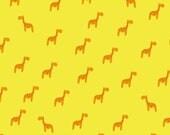 Gift wrapping Giraffe