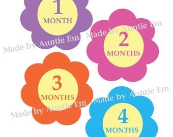 Flowers Monthly Onesie Stickers