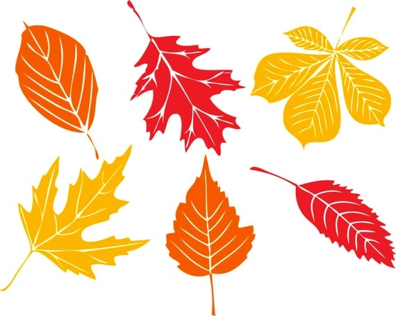 Window Color Herbst Blatt: Fall Leaf Decal Set 6 Leaves 46 Per Leaf