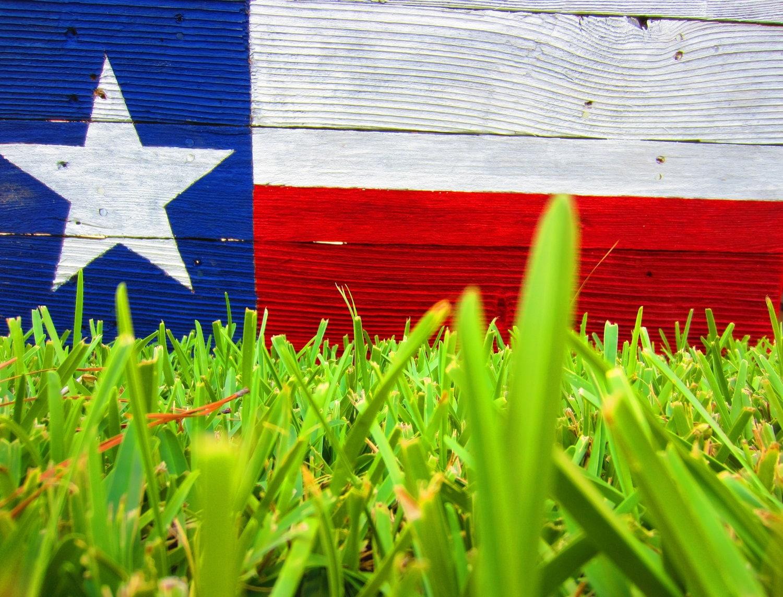 Texas Flag Rustic Sign