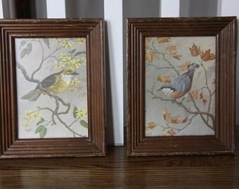 Set of 2 antique very old framed bird prints