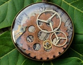 Copper gear and watch pieces with real bug pendant (005)