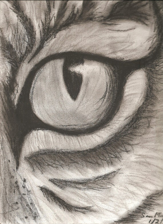 Items Similar To Tiger Eye Charcoal Freehand Drawing On Etsy