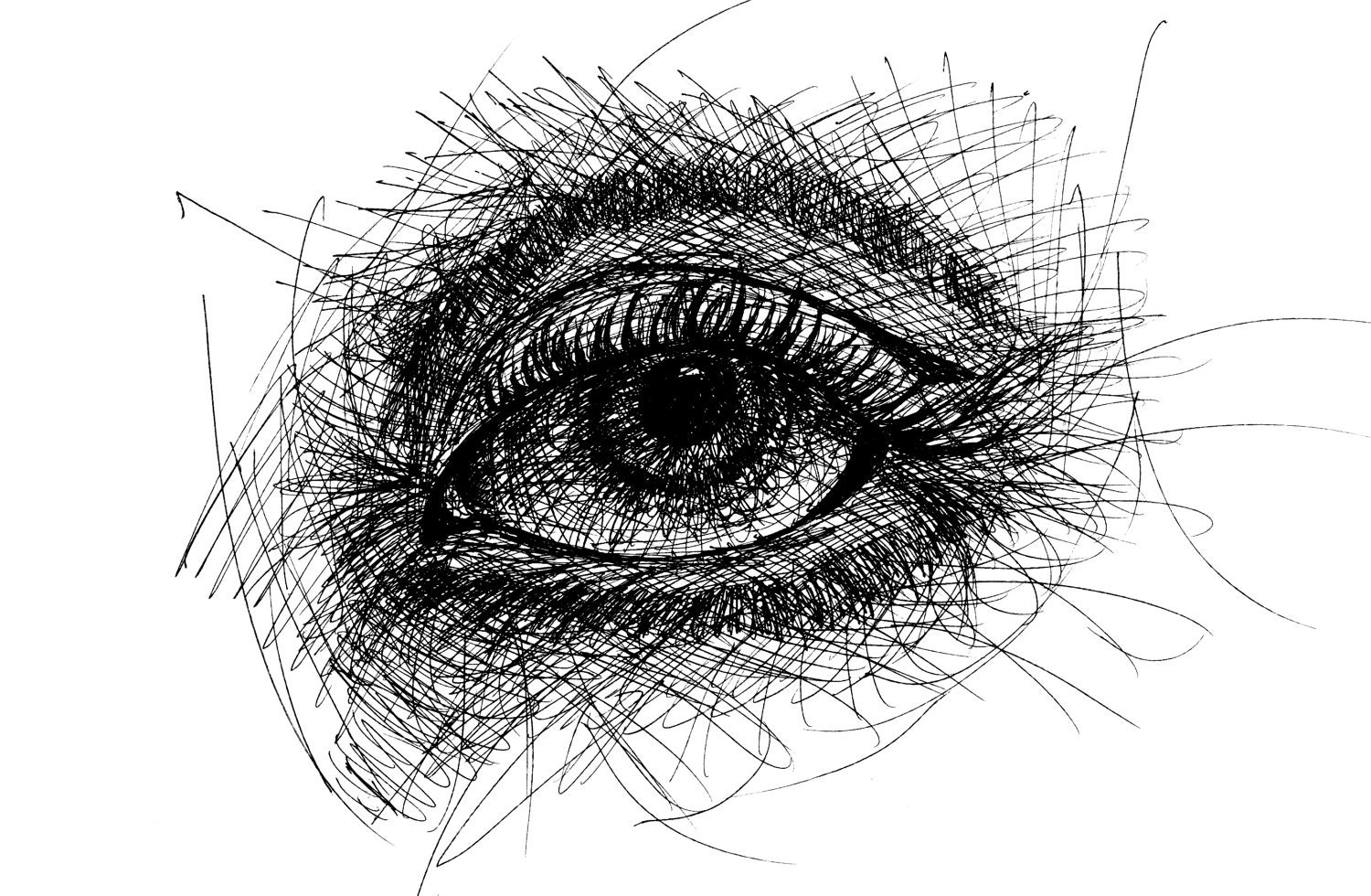 Line Drawing Pen : Art print pen and ink line drawing eye black by