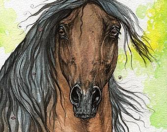 Bay arabian horse watercolor painting