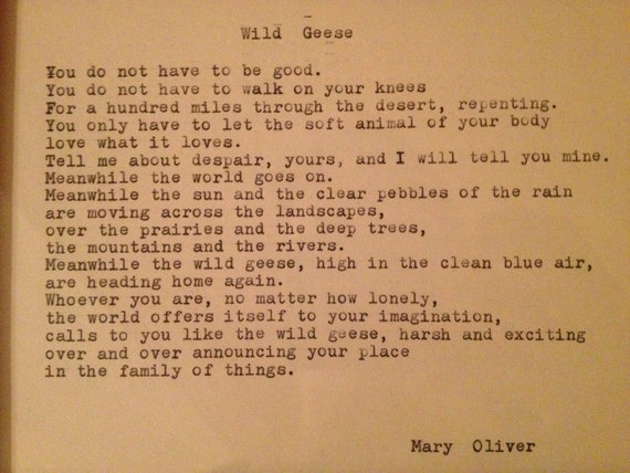 """wild geese mary oliver essay For this year's passover seder, my daughter brought a packet of poems that she related to the themes of the holiday one of those poems, mary oliver's """"wild."""