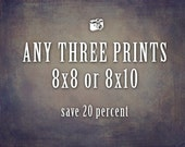 Sale, Any Three 8x10 or 8x8 Prints, Save 20%, Fine Art Photography, Home Decor, Discount