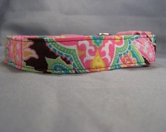 Colorful Paisley on Brown Dog Collar