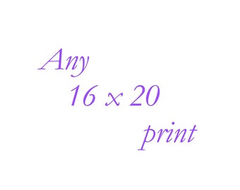 Any 16x20 Print - Your Choice